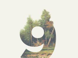 9 дом гороскопа